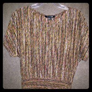 Shirt sleeved dressy top